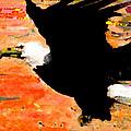 Washington Eagle by Marcello Cicchini