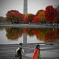 Washington Fall Children by Jost Houk