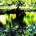 Washington Park by Jeffery L Bowers