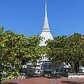 Wat Prot Ket Chettharam Singhalese-style Chedi Dthb1897 by Gerry Gantt