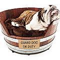 Watch Dog Sleeping On Job by Susan Schmitz
