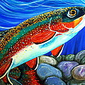Brook Trout  by Jackie Carpenter