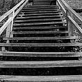 Watch Your Step by Bob Slitzan