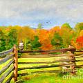 Watching Autumn by Darren Fisher