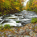 Watching It All Go By  At Beaver's Bend Broken Bow Fall  Foliage Oklahoma by Silvio Ligutti