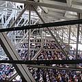 Watching The Game Below The Rafters by WaLdEmAr BoRrErO