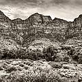 Watchman Trail In Sepia - Zion by Tammy Wetzel