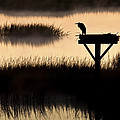 Watchtower Heron Sunrise Sunset Image Art by Jo Ann Tomaselli
