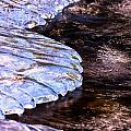 Water And Ice by Jeff Sinon