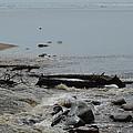 Water And Rocks by Linda Kerkau