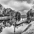 Water Bus Stop Bute Park Cardiff Mono by Steve Purnell