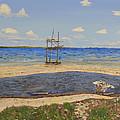 Water Cay Beach Grand Cayman by Dorothy Krajewski