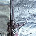 Water Drops Abstract2 by Stelios Kleanthous