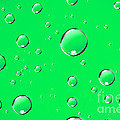 Water Drops On Green by Sharon Dominick