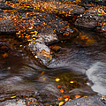 Water Flow Through The Boulders. Eureka. Mauritius by Jenny Rainbow