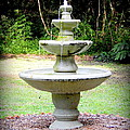 Water Fountain  by Lynn Griffin