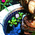 Water Fountain by Simonne Mina