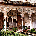 Water Gardens Of The Palace Of Generalife by Weston Westmoreland