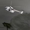 Water Landing by Paul Job