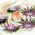 Water Lilies by Anastasiya Malakhova