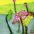 Water Lilies  Chinese Watercolor Art by Merton Allen