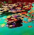 Water Lilies Pond Pink Lotus And Koi  Beautiful Nympheas Water Garden  Quebec Art Carole Spandau by Carole Spandau