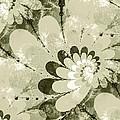 Water Lilies Spirals by Anastasiya Malakhova