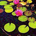 Water Lilies With Pink Flowers - Vertical by Lyn Voytershark