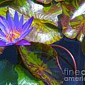Water Lily Pond by Roselynne Broussard