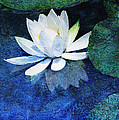 Water Lily Two by Ann Powell