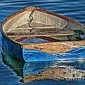 Water-logged by Susie Peek