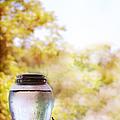 Water by Margie Hurwich