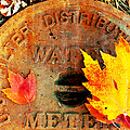 Water Meter Cover With Autumn Leaves Abstract by Andee Design