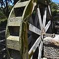 Water Mill by Allen Sheffield