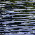 Water Pattern by Les Palenik