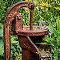 Water Pump by Grace Grogan