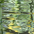Water Reflection Green And Yellow by Dan Sproul