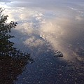 Water Reflection by Liana Robinson