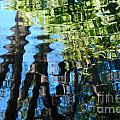 Water Reflections 1 by Nancy Mueller