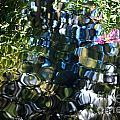 Water Reflections 9 by Nancy Mueller