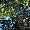 Water Reflections 7 by Nancy Mueller
