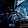 Water Reveals  by Wesley Hahn