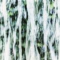Water Spray by Margie Hurwich