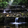 Water Steps In Fairmount Park by Bill Cannon