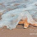 Water Veil by Barbara McMahon