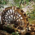 Water Wheel by Marty Koch