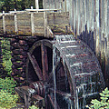 Water Wheel by Phyllis Taylor