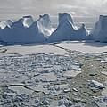 Water Worn Iceberg In Sea Ice Lazarev by Tui De Roy