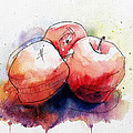 Watercolor Apples by Andrew Fling