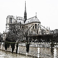 Watercolor Notre Dame by Evie Carrier